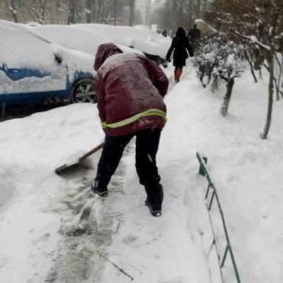 З 5 години ранку 480 двірників та 18 одиниць техніки розчищали прибудинкові території житлових будинків Святошинського р-ну